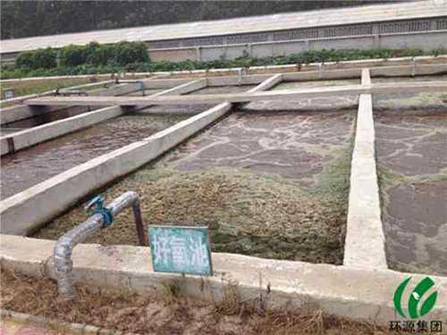中牟县官渡镇养猪场污水处理